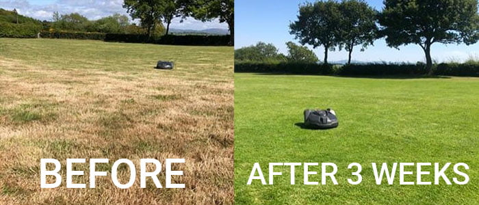 husqvarna automower before and after by Denbigh Plant